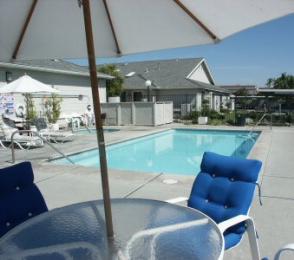 Enjoy the spacious and warm pool.
